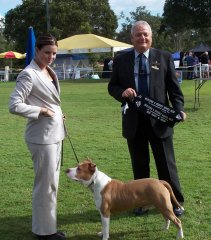 Beenleigh & District Kennel Club - 7th July 2008 - Runner Up Best In Group & Puppy In Group